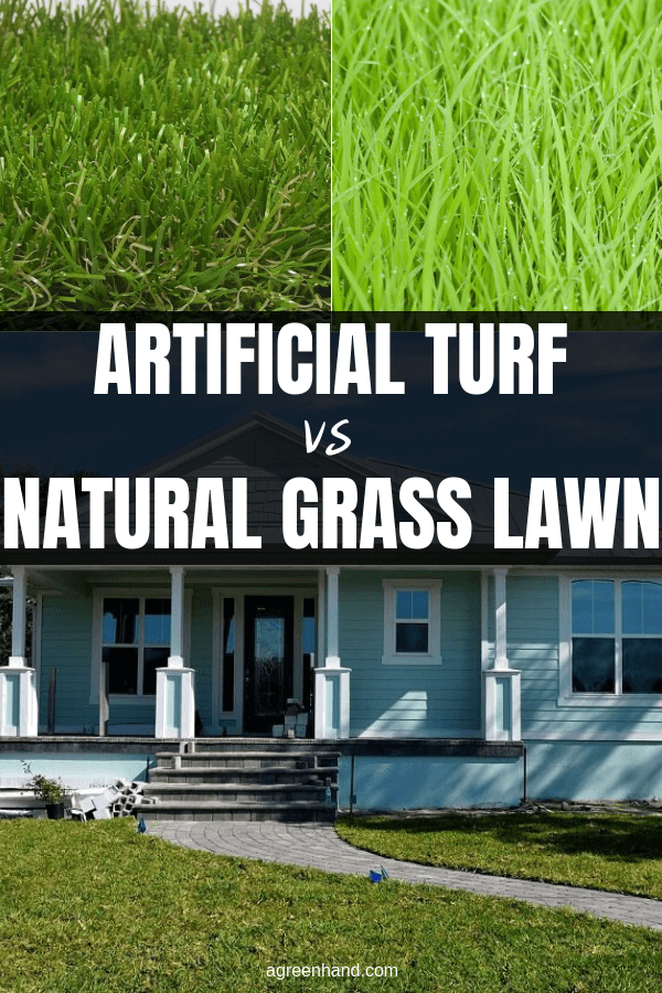 Residential artificial grass offers less lawn care- no mowing or watering. Plastic grass lawns are ever green, but does sod or faux grass leave more money in a wallet?
