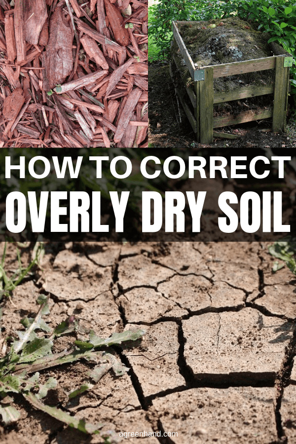 How To Correct Dry Soil