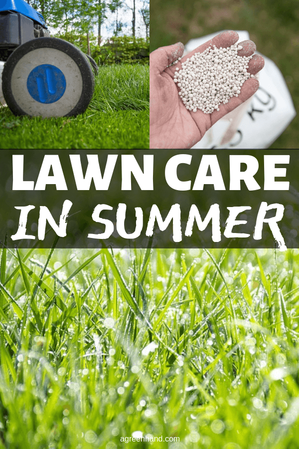 Summer is the peak season of the year for enjoying the lawn and garden. Some attention is required to efficiently maintain lawn health. #agreenhand #lawncare #summer