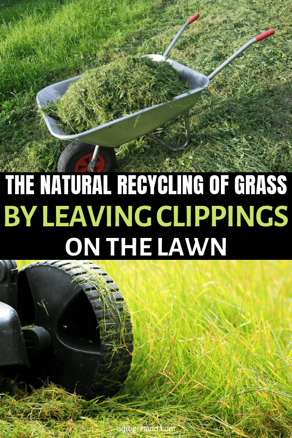 Leaving Clippings On The Lawn