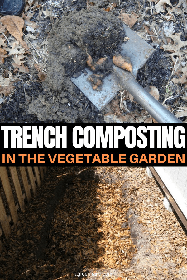 Trench Composting in the Vegetable Garden